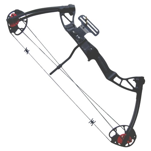 COMPOUND BOW 25-55 LBS (CO 029B)
